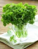 Frische grüne organische Petersilie Lizenzfreie Stockbilder
