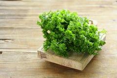 Frische grüne organische Petersilie Stockbild