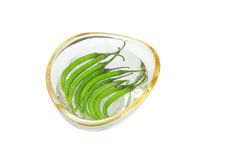 Frische grüne Paprikas im Wasser Stockfotografie