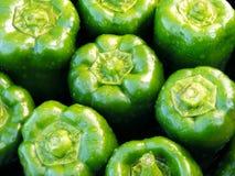 Frische grüne Pfeffer Stockbilder