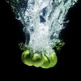 Frische, grüne Tomaten Stockbild