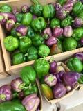 Frische grüne und purpurrote Gemüsepaprikas für Verkauf Stockfoto
