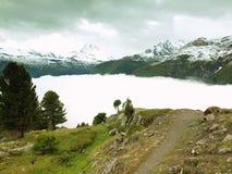 Frische grüne Wiese und nebelhafte Spitzen von Alpenbergen über tiefem Tal Lizenzfreie Stockfotos
