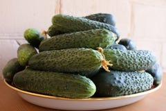 Frische gr?ne Gurken auf einer Platte Vegetarische Nahrung Gurke enth?lt Vitamine B, A lizenzfreie stockfotografie