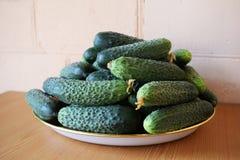 Frische gr?ne Gurken auf einer Platte Vegetarische Nahrung Gurke enth?lt Vitamine B, A lizenzfreies stockbild