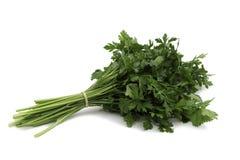 Frische grüne Petersilie Stockfoto