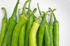 Frische große grüne Paprikas lizenzfreie stockfotos