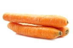 Frische große Karotten Stockfotos