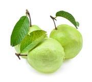 Frische Guajava-Frucht solated auf weißem Hintergrund Lizenzfreie Stockfotos