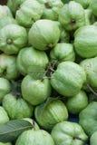 Frische Guave Lizenzfreie Stockfotografie