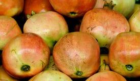 Frische Guave Lizenzfreies Stockfoto