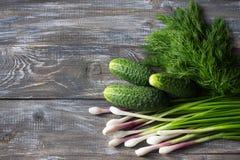 Frische Gurken, Frühlingszwiebeln und Dill für Salat auf einem hölzernen ssurface Stockbilder