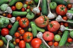 Frische Gurken, Tomaten und Knoblauch, Draufsicht Dunkel und schwermütig stockfotos