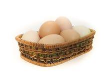 Frische Hühnereien Lizenzfreies Stockfoto