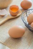 Frische Hühnereien Lizenzfreies Stockbild