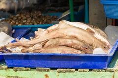 Frische Haifische im Meeresfrüchtemarkt Lizenzfreie Stockfotos