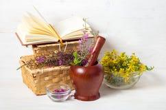 Frische heilende Kräuter Lizenzfreies Stockfoto