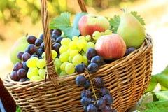 Frische Herbstfrüchte Stockfotografie