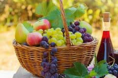 Frische Herbstfrüchte und Rotwein Stockbild