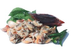 Frische Herzmuschel vom Meer von Thailand und von Basil Leaves Stockbild