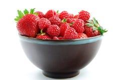 Frische Himbeer-u. Erdbeerschüssel Lizenzfreies Stockbild