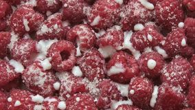 Frische Himbeerfrucht mit Jogurt stock footage