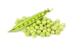 Frische Hülse der grünen Erbse getrennt auf weißem Hintergrund Stockfotografie