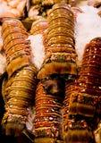 Frische Hummer-Hecks auf Eis lizenzfreies stockbild
