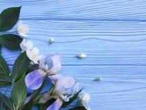 Frische Irisblütenblume auf einem blauen hölzernen Hintergrund Lizenzfreies Stockfoto
