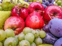Frische köstliche Biofrüchte von Rumänien stockfoto