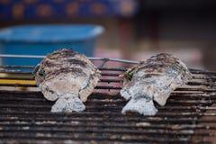 Frische köstliche gegrillte Fische, Tilapia, Nil-Fisch mit Salz Stockfotografie