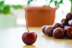 Frische köstliche Kirschen auf dem Tisch Stockbilder