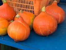 Frische Kürbise auf Landwirtmarkt Lizenzfreie Stockfotografie
