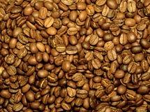 Frische Kaffeebohnen lizenzfreies stockfoto