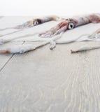 Frische Kalmare auf Holztisch Stockbilder