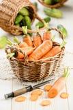 Frische Karotte im Korb mit Gurken Stockbilder