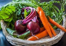 Frische Karotte und Rote-Bete-Wurzeln lizenzfreie stockfotografie