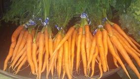 Frische Karotten Lizenzfreie Stockbilder