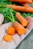 Frische Karotten Lizenzfreies Stockbild