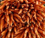 Frische Karotten auf nassem Markt Stockbild