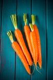 Frische Karotten des Bauernhofes auf blauer Tabelle Lizenzfreie Stockfotografie
