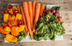 Frische Karotten, lettus, grüner Pfeffer und Rettiche auf verwittertem w Lizenzfreies Stockbild