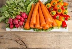 Frische Karotten, lettus, grüner Pfeffer und Rettiche auf verwittertem w Lizenzfreie Stockfotos