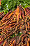 Frische Karotten am Markt Stockbild
