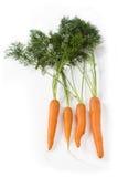Frische Karotten mit Blättern auf Weiß Stockbild
