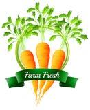 Frische Karotten mit einem neuen Aufkleber des Bauernhofes Lizenzfreie Stockfotos
