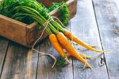 Frische Karotten mit grünen Oberteilen in einer Holzkiste Stockbilder