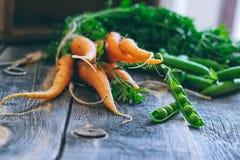 Frische Karotten mit grünen Oberteilen und Hülsen von Erbsen Stockbild