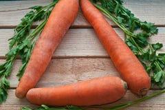 3 frische Karotten und Petersilie Stockbild