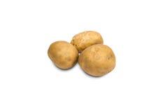 Frische Kartoffel Lizenzfreies Stockbild